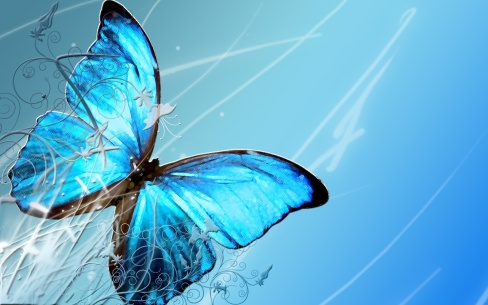 blue_butterfly_by_crazthonfry_wallpaper-1440x900